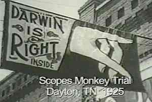 Significance of the Monkey trial ?