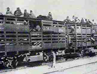 railroad car transporting Armenians, 1915
